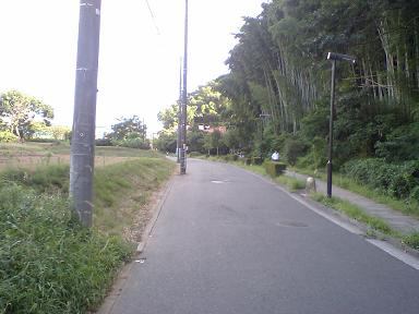 20070916 (6).JPG