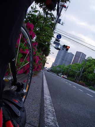 2008.04.26 (3).jpg