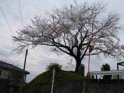 2007.03.31.15r.jpg