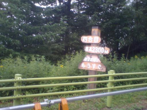 2007.08.18 (5).JPG