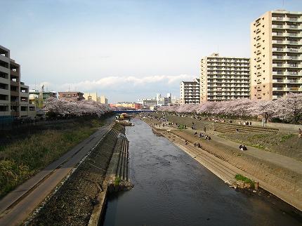 2008.03.29.jpg
