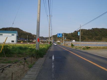 2008.04.05 (29).jpg