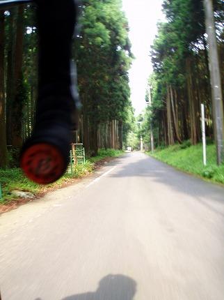 20080705 (7).jpg